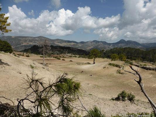 Parc de Talassemtane - Azilane