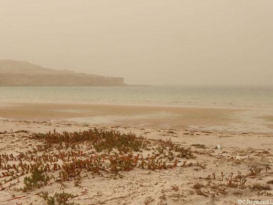 plage avec multitude de couleurs, falaises et océan sur le Banc d'arguin