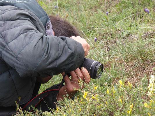 photographe qui réalise la photo d'une fleur
