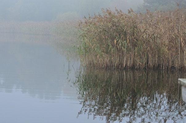 Kleiner See Neu Heinde