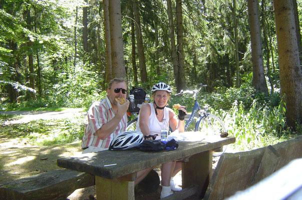 Weiter ging es durch den Teutoburger Wald, vor der uns wegen der zu erwartend Steigungen etwas bange war. Aber glücklicherweise war alles ganz harmlos.