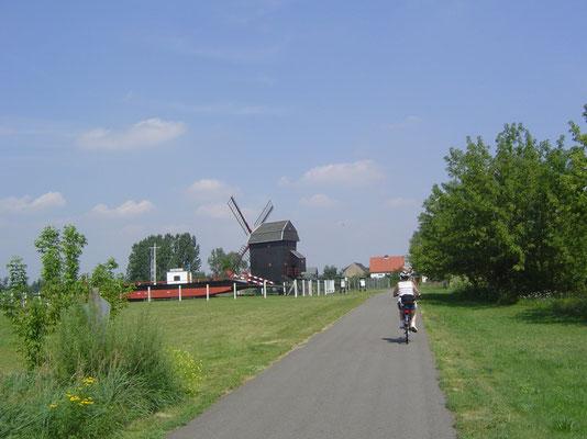 Bei Elster kommen wir an einem kleinen Freilichtmuseum vorbei, bestehend aus einer restaurierten Bockwindmühle und einer aufgebockten historischen Gierseilfähre.