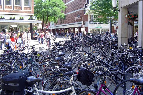 Münster ist die Stadt der Radler.