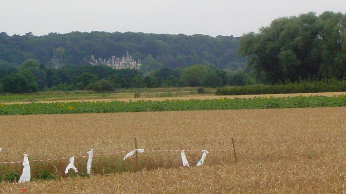 Ussé ist das Dornröschenschloss, das den Schriftsteller Charles Perrault zu dem Märchen angeregt haben soll.