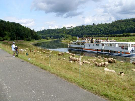 Unterwegs an der Weser