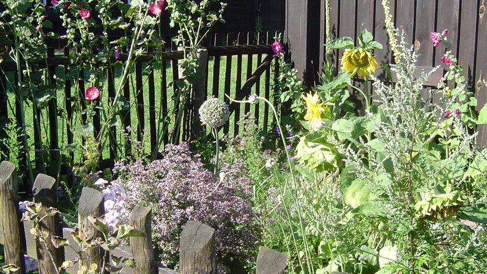 Ein bunter Bauerngarten