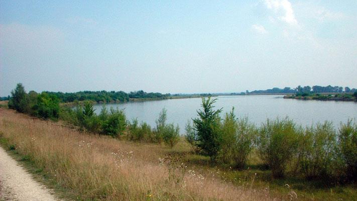 Weiter geht es an der breit gewordenen Donau