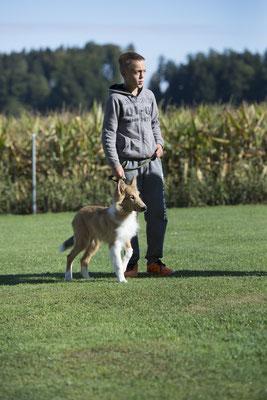 Kind & Hund © Hundeschule gooddog