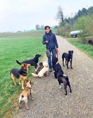 Simone Furrer © Hundeschule gooddog