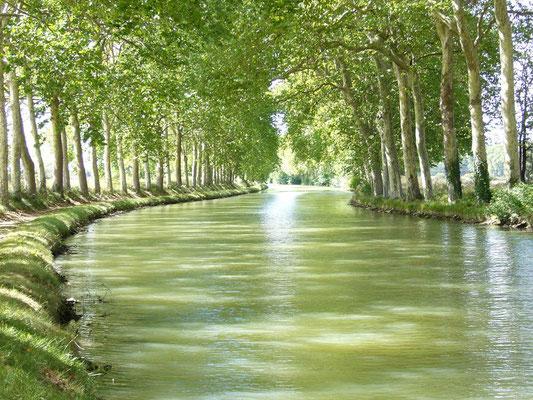 Gites des Camparros à Nailloux : canal du Midi