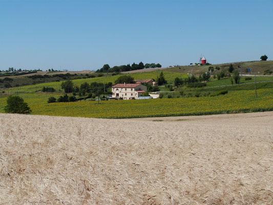 vue panoramique des Gites des Camparros à Nailloux