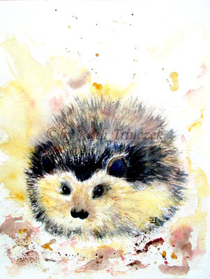 "Igel - Hedgehog - ""Look for a place"" - Aquarell - 30,0 x 40,0 cm - verkauft/sold"