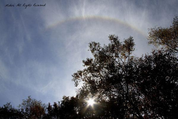 突然現れた虹♪