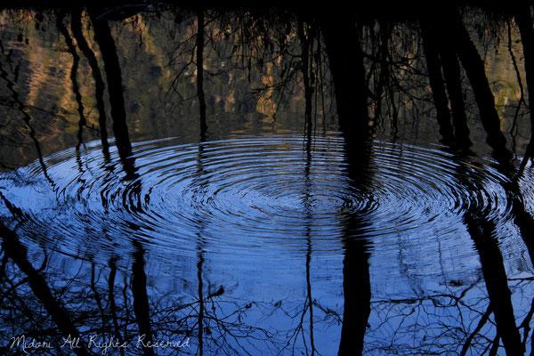 大好きな上高地で撮った一枚です。Waterの公募展で、1席を頂くことが出来ました。