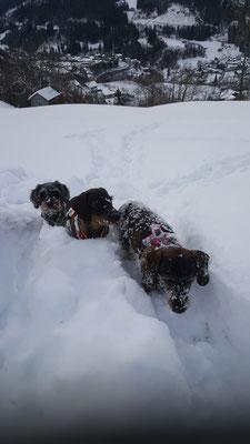 So a Gaudi im Schnee!