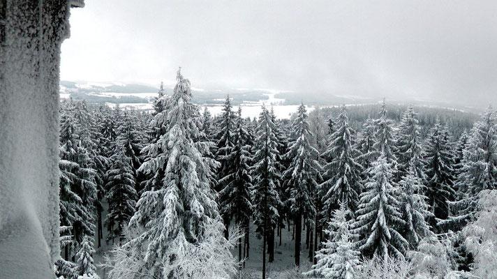 Auf dem Weißenstein bei Stammbach