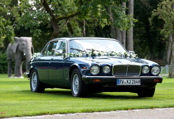 Jaguar XJ6 Baujahr 1984 Schrägansicht rechts