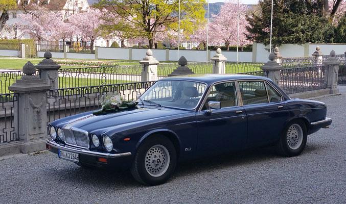 Jaguar XJ6 Baujahr 1984 Schrägansicht links