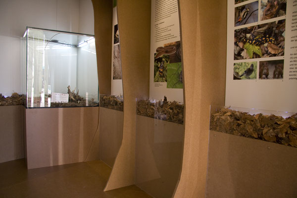 Pavillon des Landesbetriebes Wald und Holz NRW