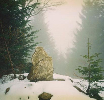 Im Nebel am Geiskopf.