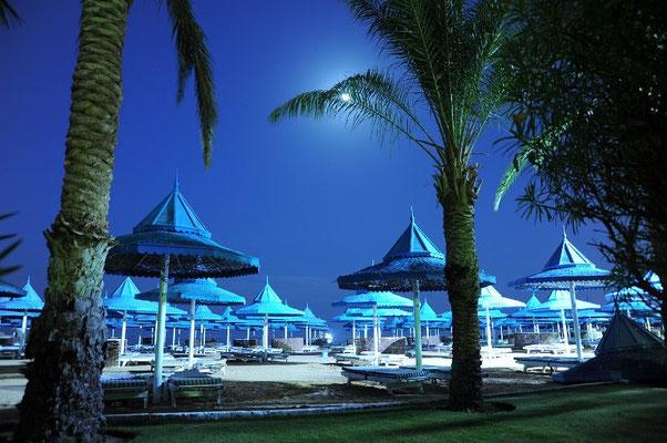 Mondlicht liegt über dem Strand