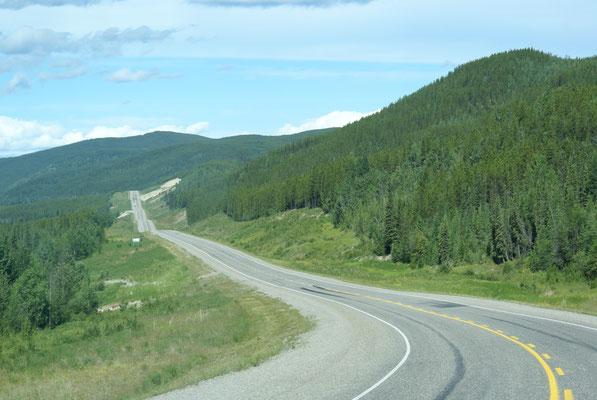 Wir fahren weiter auf der Alaska Hwy. zurück nach Watson Lake Richtung Norden.