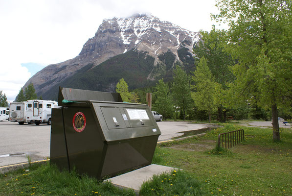 Überall finden sich Bärensichere Abfallstationen