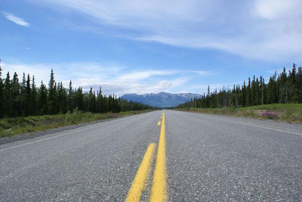 Immer schön geradeaus nach Norden, es geht noch 800 Km bis zur Grenze Alaskas