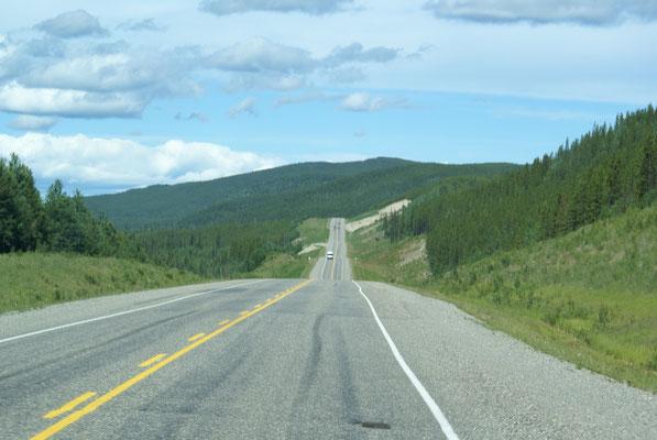 Unsere Reise geht immer weiter Richtung Norden nach Alaska!