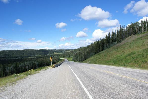 Wir verlassen Yukon und unsere Reise geht von nun an weiter auf der Alaska Hwy. gegen Süden bis Liard River Hot Springs wo wir 2 Tage in den heissen Quellen verbringen .