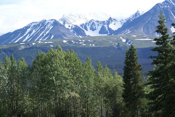 Haines Junction auf der Alaska Hwy.