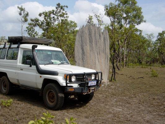 Magnetischer Termitenbau im Litchfield National Park / Australien