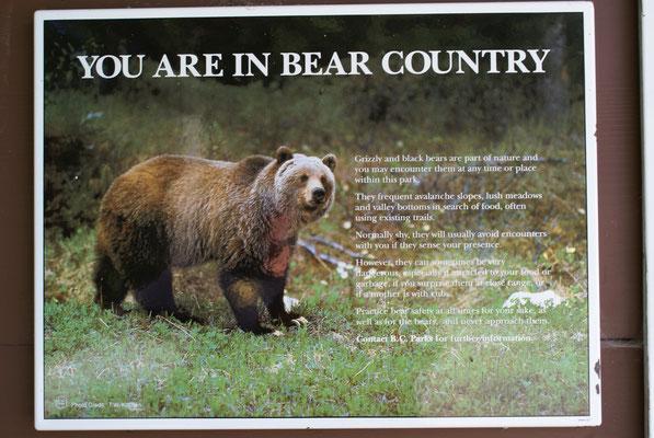 Auch hier überall Infos wegen den Bären in der Gegend. Mittlerweile hat auch der letzte Europäer begriffen dass wir hier im Bärenland sind.