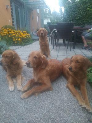 Avi, die Hausdame im Hintergrund, mit Juli, April und Summer