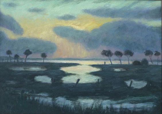 30) Hans Pick: Frühjahrs-Überschwemmung im Moor (80 x 120) Verkauft