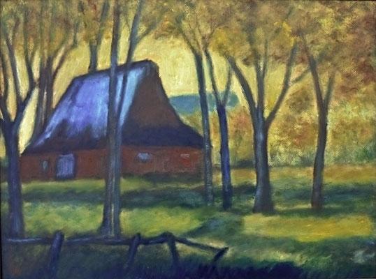 27) Hans Pick: Haus im Moor (60 x 80) Verkauft