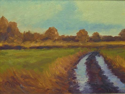 32) Hans Pick: Moorweg (24 x 30) Verkauft
