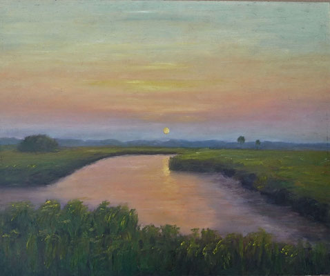 16) Hans Pick: Breites Wasser (50 x 60) Verkauft