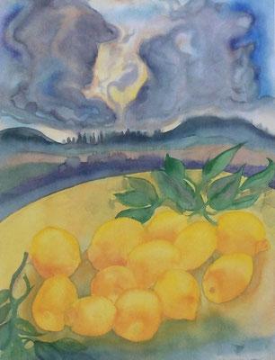 Günter Grass Algraphie: Zitronen unter Wolken (59,5 x 45 / 69,5 x 53,5; am Markt vergriffen, 1 x lieferbar)