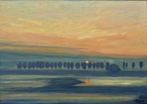 29) Hans Pick: Überschwemmte Wümme (80 x 120) Verkauft