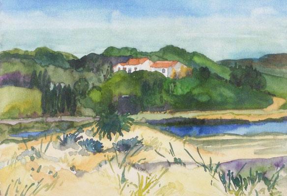 Günter Grass Algraphie: Südliche Landschaft (25 x 36 / 36 x 48,5; am Markt erhältlich)