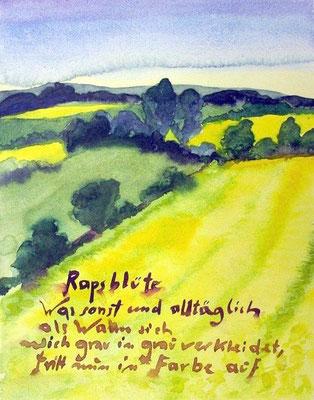 Günter Grass Algraphie: Rapsblüte (31 x 24 / 45 x 35; am Markt vergriffen, derzeit nicht lieferbar)