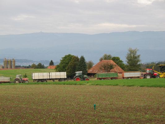 in Kolonnen stehen die Transportwagen bereit