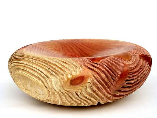 thomas-pildner-mammutbaum-giant-sequoia-ø59h22cm
