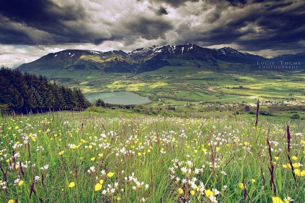 Plateau du Trièves