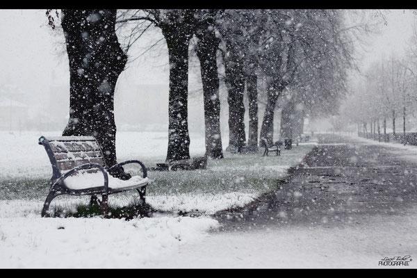 1ère neige, Isère.