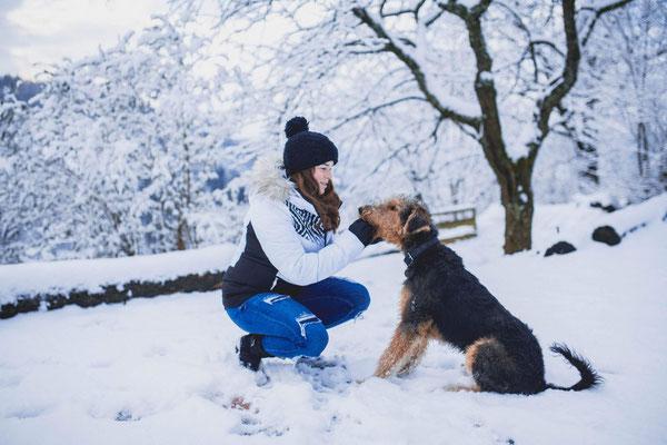Asko arbeitet mit seinem Frauchen im Schnee (1)...