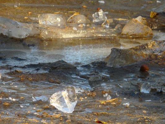 6. Sonnenlicht durchflutete Eiskristalle