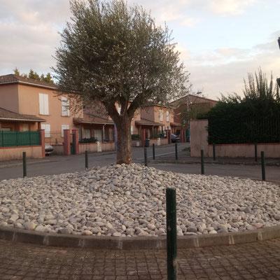 Jardin minéral et bassin Toulouse - SARL ALBIZIA