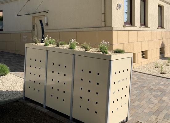 """3er Mülltonnenbox mit Pflanzdach - Stanzmuster """"ST 3/5"""", Farbvar. 3:  Pfosten: RAL 9006 / Bleche + Pflanzdach: RAL 1015 Hellelfenbein"""